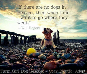 If there are no dogs on Heaven, then when I die, I want to go where ...