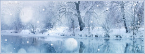 Winter Beauty Facebook Cover