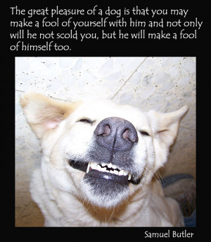 dog-quotes-picture-dog-fun.jpg