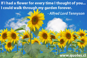 ... Thought of you,I Could walk through my garden forever ~ Flowers Quote