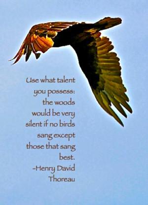 Bird in flight... by N. Scarberry