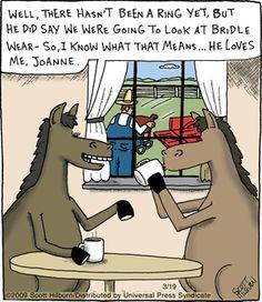 Equine Quotes