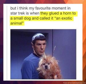 Favourite moment in Star Trek...