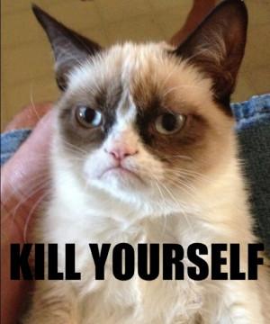 Grumpy Cat Credited