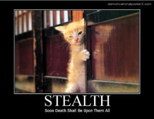 21 Cat Motivational Posters: Inspirational wisdom that is just a ...
