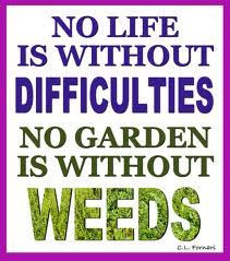 Gardening Quotes | Your Easy Garden