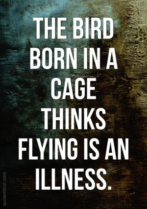 The bird born in a cage