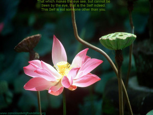 The Quote: That which makes the eye see, but cannot be seen by the eye ...
