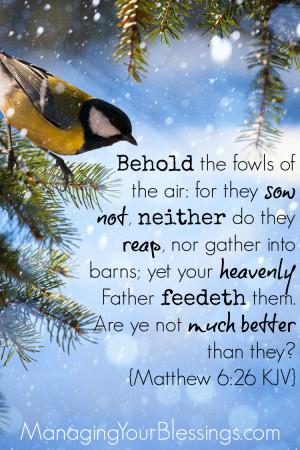 MYB Scripture Sunday Matthew 6 26