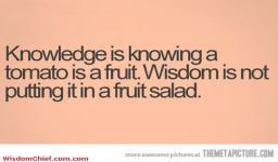 Knowledge Vs Wisdom Very Funny Cute Quote Picture