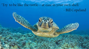 bill copeland be like a sea turtle - The best quotes, sayings ...