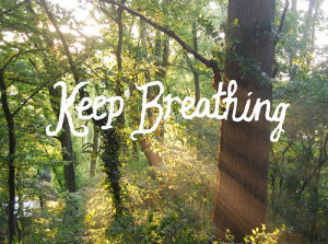 breath, forest, nature, quotes, sunlight, text, trees, woods