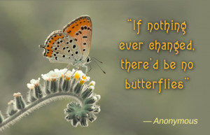 Butterfly Change Quote