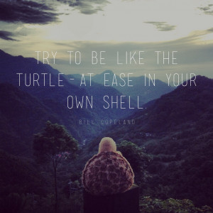 Try to be like the turtle – at ease in your own shell.
