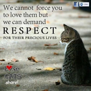 and we do http://sulia.com/channel/cats/f/7dde2222-cd75-42ec-8eba ...