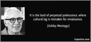 ... , where cultural lag is mistaken for renaissance. - Ashley Montagu