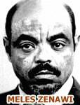 Ethiopia: Open letter to PM Meles Zenawi