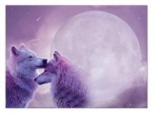 wolf love 2 Jpeg