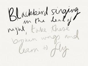 Beatles Blackbird Album