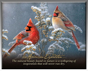 Northern Cardinal Inspirational Wildlife Wall Plaque