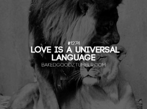 Love is a universal language