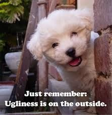 cute puppy quotes - Google Search More