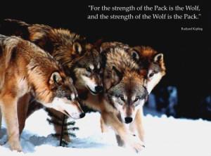 previous motivational quotes picture 1659911 next motivational quotes ...