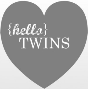 Twins Baby Shower Invitation Wording – Quotes