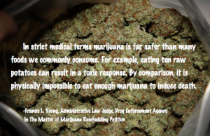 Weed Quote Wednesday: DEA Judge Francis Young's Pro-Weed Conclusions