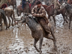 Horseback Riding Is A Sport Quotes Afghanistan's national sport
