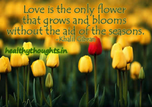 love-quotes-Khalil-Gibran-love-is-the-only-flower-that-grows-withou