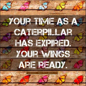 time as a caterpillar has expired. Your wings are ready.