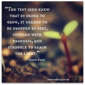 Beautiful and touching quote about #growth