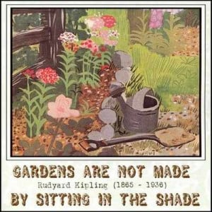 ... quotes quotes garden flower quotes gardening quotes funny secret