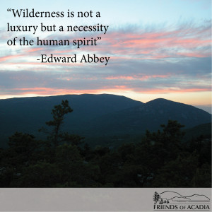 Friday Quote: Edward Abbey