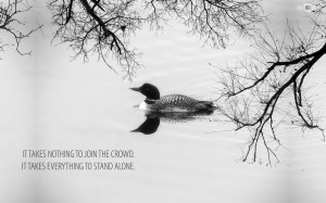 Quotes About Swans
