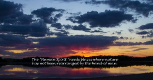 Quotes Resilience of Human Spirit