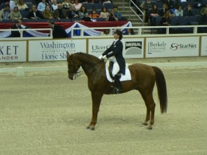 Tallest dressage horse at the Washington International Horse Show this ...