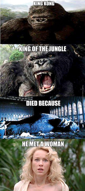 funny-pics-king-kong-died-because-he-met-a-woman