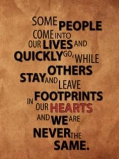Sayings - advice Photo
