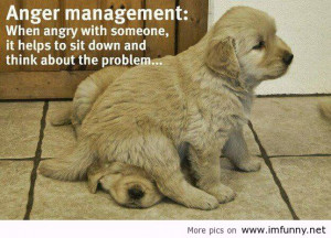 funny-quotes-quotes-fun-funny-quotes-funny-pics-funny-animals-Favim ...