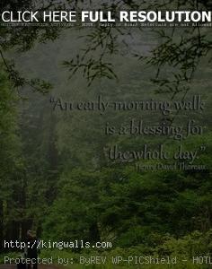 Nature Quotes Emerson Thoreau