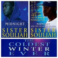 sister souljah love her books more book worth sisters souljah post ...