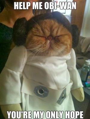 Funny Princess Leia Star Wars Help Me Obi-Wan Meme Quote Picture - You ...