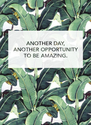Another day, another opportunity to be amazing.
