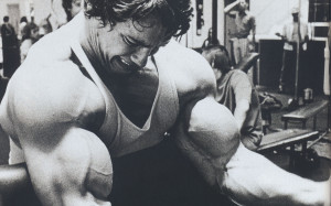 Whether you're an avid Arnold Schwarzenegger fan and live for those ...