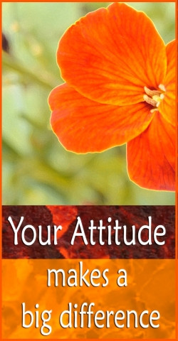 positive Attitude causes a chain reaction of positive thoughts ...