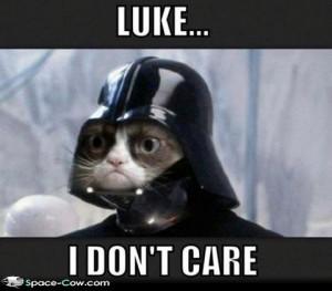 ... labels cats darth vader grumpy cat funny animals funny pics humor