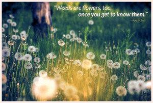 April Showers Bring May Flowers…And Weeds!