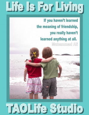 If you haven't learned the meaning of friendship, you really haven ...